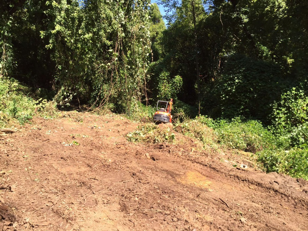 land-clearing-chattanooga